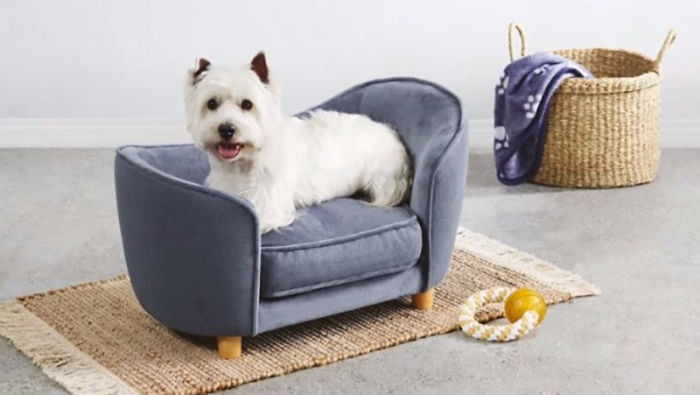 Tiny Dog Sofas Are Hitting Aldi S